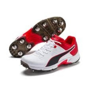 Puma One8 cricket Spikes shoes