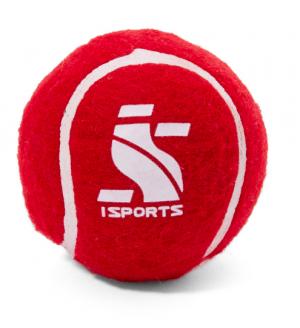 IS Endura cricket tennis ball